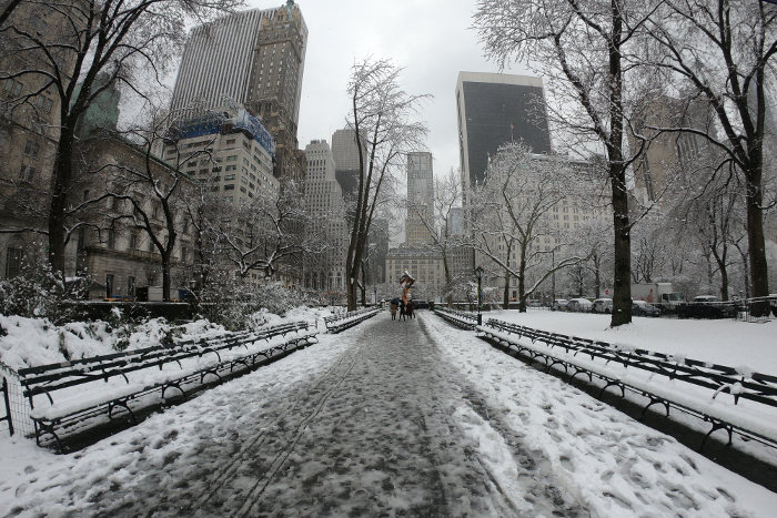 Central Park New York neve snow